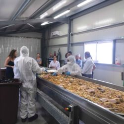Συνάντηση των εταίρων του προγράμματος Life F4F «Τροφή από Τρόφιμα» στο Ηράκλειο